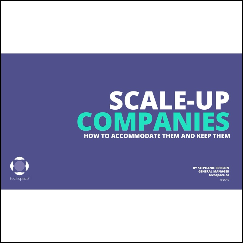 Scale-Ups – How can coworking accommodate and keep them (Techspace)
