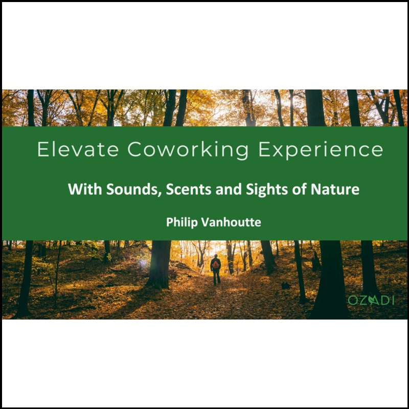 Elevate Experience with Senses